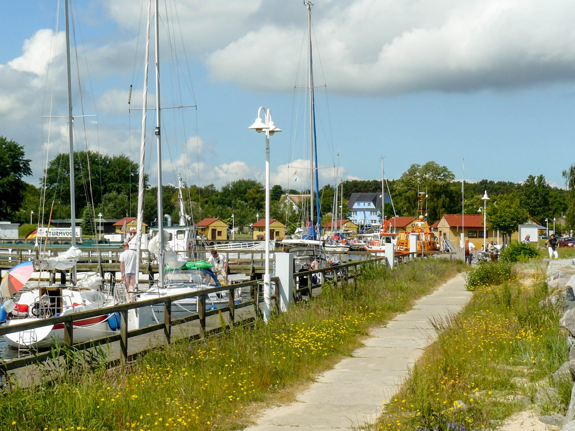 Hafen Freest