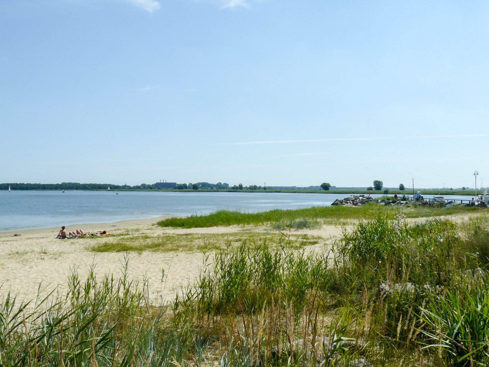 Strand in Freest